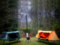 Smart Camping Tents Combo