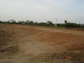 Commercial Plots