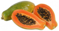 PAPAYA READY PLANT RED LADY TAIWAN 786