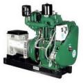 Air Cool Blower Type Generators